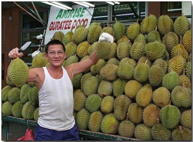 durian nedir