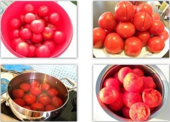 domates-konservesi