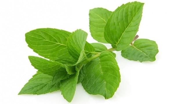 hickiriga-bitkisel-tedavi