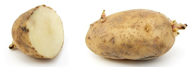 zararli-patates